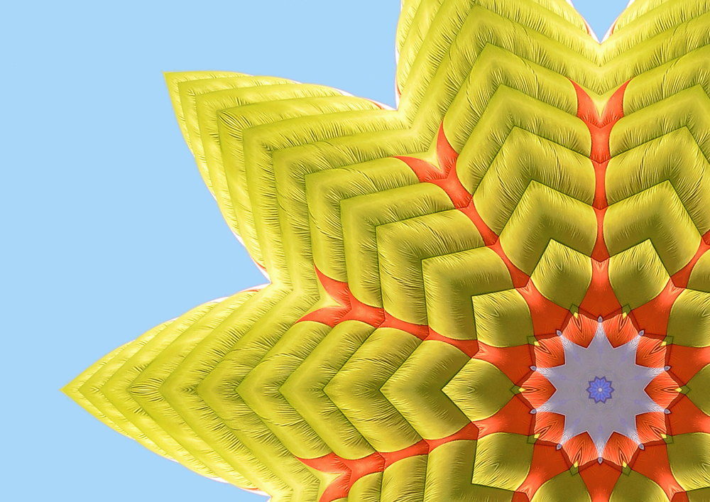 Parachute Petals